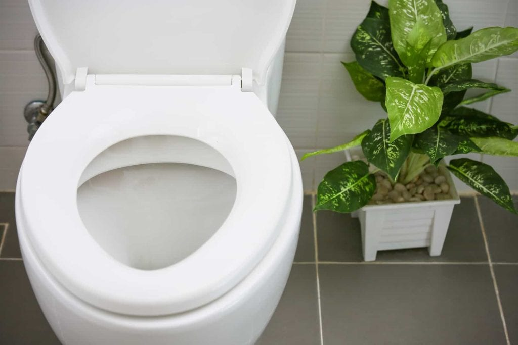 important factors for toilet installation